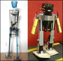 Bipedal robots (AAAS)