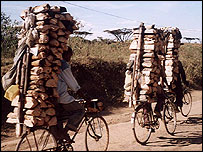 People carry wood on bicycles