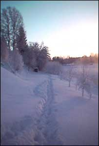 A path through the snow in Skelleftea during typical snowfall in 2004