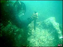 A diver with what experts say is the remains of an ancient wall 