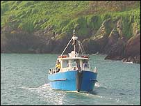 The supply boat arriving at Skokholm