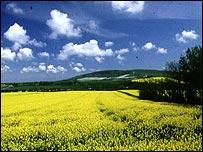 Farmland, BBC