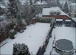 A back garden in Dover on Wednesday