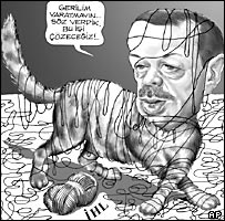 Cartoon showing the head of Prime Minister Recep Tayyip Erdogan on a cat's body