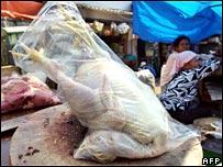 اكتشاف الحالة الـ15 لمرض انفلونزا الطيور في مصر