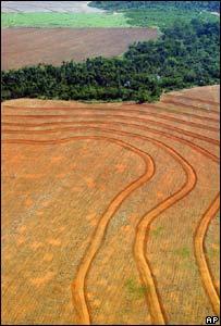 Zona deforestada en Amazonas, Novo Progreso, Brasil.