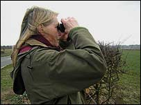 Judy Gilbert trying to spot the hunt