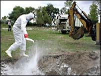 A veterinary disinfects the area where culled chickens were buried in Turkey