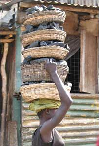 Girl carries basket of charcoal to use for cooking