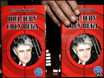 New Karadzic book