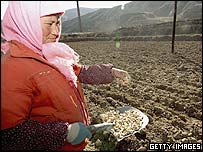 A Chinese farmer in Qinghai province