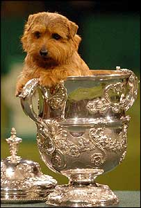 Coco won the big cup