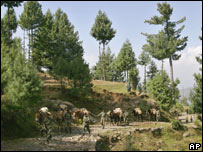 Soldiers lead a convoy of mules carrying relief supplies in Pakistan-run Kashmir