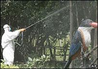 Spraying disinfectant near giant bird statue in Thai bird reserve - 18/10/05