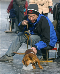A man with his dog in China, Getty Images