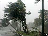 Las matas de palma se tuercen ante los embates de Wilma en Cancún