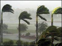 Wilma makes landfall in Naples, Florida