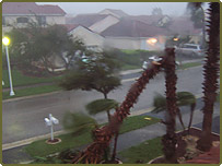 Hurricane Wilma hitting Weston, Florida. Picture by reader David Eyley.