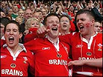Welsh fans celebrate victory at the final whistle