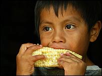 Niño en Chiapas, México UNICEF/hq04-0573/Mauricio Ramos