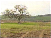 Site near Bangor