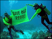Greenpeace divers in Tubbataha waters