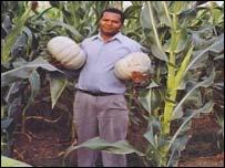 David Mwanaka