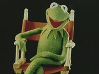 Rana René o Gustavo, del show de los Muppets.