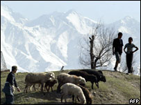 Kyrgyz boys tend a herd of sheep in the outskirts of Bishkek, 3 April 2005