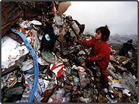 Child scavenging for rubbish in Albania