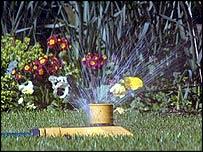 A garden sprinkler
