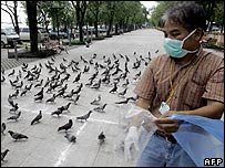 Health official with pigeons in Thailand