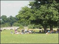 Teston Park