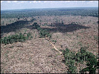 Aerial shot of part of the deforestation in the Amazon