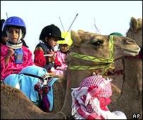 Niños jinetes de camellos.