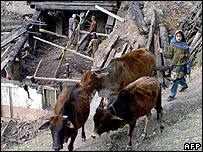 Kashmiris in Uri
