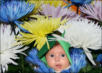 child amongst flowers