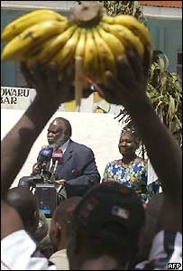 "A supporter of the Kenyan constitution ""Yes"" campaign, hold up some bananas"