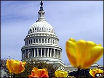 Spring flowers in front of the US Capitol
