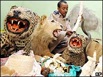 Police Inspector Tesfaye Eshete with stuffed animals and ivory carvings