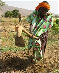 Petaka woman with digging stick, Mali