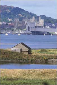 RSPB Conwy nature reserve (Pic from RSPB)