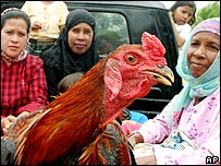 Acehnese women ride to town with a chicken in their pick-up truck in Lamdom village, Banda Aceh, Indonesia, Thursday, Nov. 24, 2005.