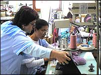 Lingerie makers at the SG3 factory