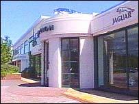 Jaguar plant