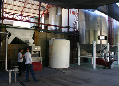 Fábrica de Pisco, Montegrande, Chile.  Foto: Manuel Toledo
