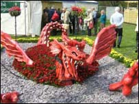 Red Dragon at RHS Spring Flower Show Cardiff 2005