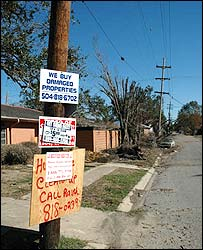 Real estate agent signs on damaged buildings in New Orleans