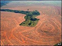 Cleared area of Brazilian rainforest (AP/Alberto Cesar/Greenpeace/HO)
