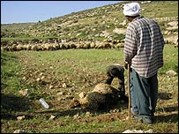 Palestinian farmers (Photograph: Amnesty Internnational0